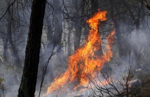 Fuego en Llíria. EFE/Försterling