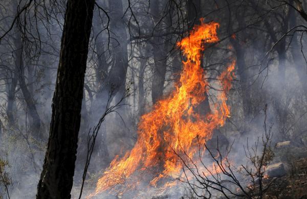 Fuego en Llíria | Foto: EFE/Försterling