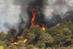 El incendio en Carlet. EFE/Reuters