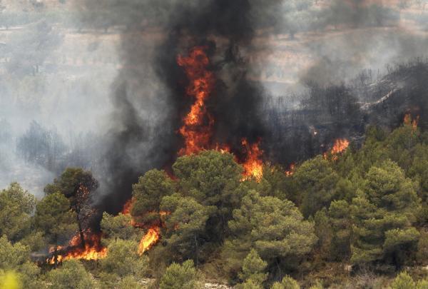 El incendio en Carlet | EFE/Reuters